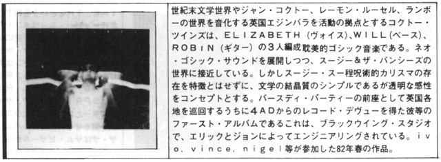 rockmagazine_cat81-83_2.jpg